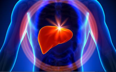 A Importância do Fígado na Visão da Medicina Chinesa