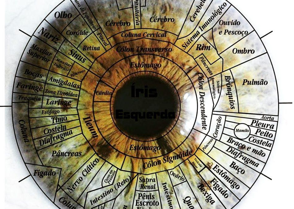 Formação em Iridologia
